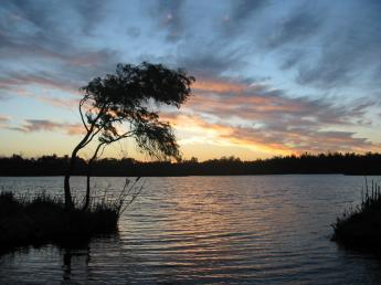 image:Yanchep_sunset.jpg