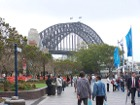 Sydney Harbour Bridge & Circular Quay (West)